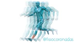corredor fisioterapia coronadas